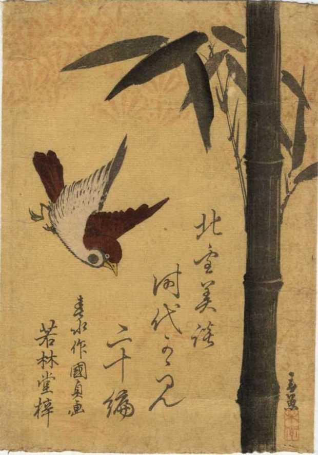 Moineau et bambou dv465